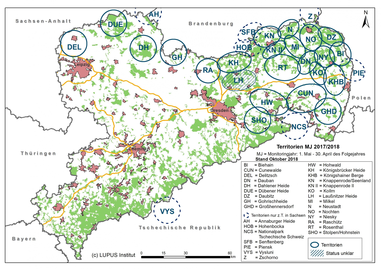 Wölfe In Sachsen Anhalt